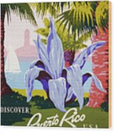 Discover Puerto Rico Wood Print