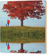 Discovering Autumn - Reflection Wood Print