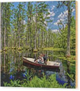 Discovery In A Cypress Swamp Wood Print