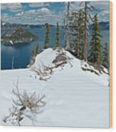 Discovery Point Panorama Wood Print
