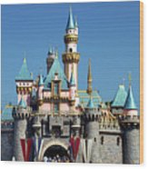 Disneyland Castle Wood Print