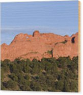 Distant Camels In The Garden Of The Gods Wood Print