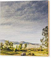 Distant Car Wrecks On Outback Australian Land  Wood Print
