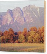 Distant Cattle Grazing Beneath Cascade Mountains 1 Wood Print