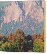 Distant Cattle Grazing Beneath Cascade Mountains 2 Wood Print