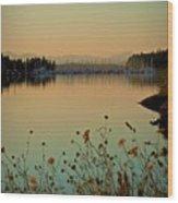 Distant Harbor Wood Print