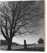 Distant Memories Wood Print