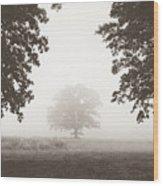 Distant Silence Wood Print