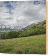 Distant Snow-capped Mountains Wood Print