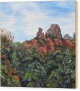 Distant View Of High Peaks Wood Print