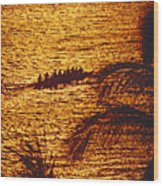 Distant View Of Outrigger Wood Print