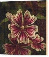 Distinctive Blossoms Wood Print