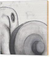 Distorted Series 1 Wood Print