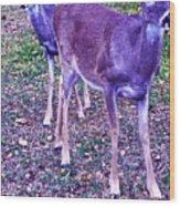 Distrubing Deer Wood Print
