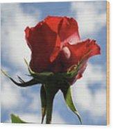 Diva Rose Wood Print