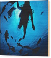 Diver And Reef Fish Wood Print