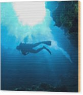 Diver At Pakin Atoll Wood Print