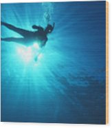 Diver On Mahi Wreck Wood Print by Bob Abraham - Printscapes