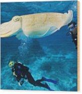Divers Swim Near A Cuttlefish Wood Print