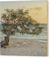 Divi Tree Sunset Wood Print