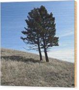 Divine Hill Wood Print