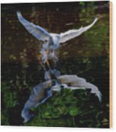 Divine Longing Wood Print