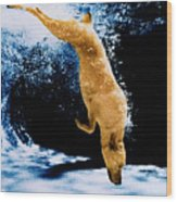 Diving Dog Underwater Wood Print