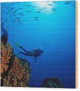 Diving Scene Wood Print