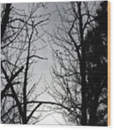 Divinity Light Wood Print