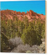 Dixie National Forest Wood Print