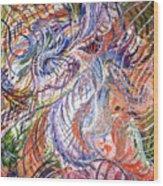 Dizzy Feathers Wood Print