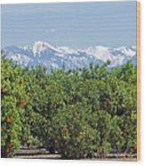 Dm6850-e Orange Grove And The Sierra Nevada Ca Wood Print