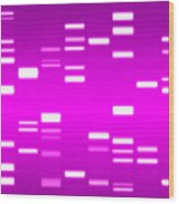 Dna Magenta Wood Print by Michael Tompsett