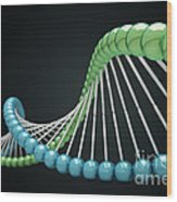 Dna Structure Wood Print