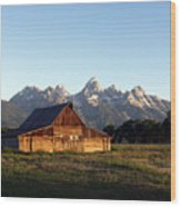 Dnrd0104 Wood Print