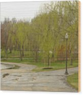 Dnrf0401 Wood Print