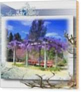 Do-00013 Wisteria Branches Wood Print