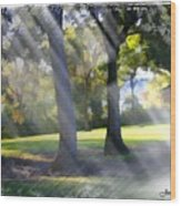 Do-00017 Point Frederic Wood Print