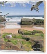 Do-00046 Birdie Beach Wood Print