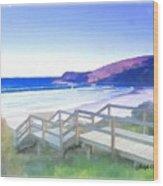 Do-00103 Frasier Beach Wood Print