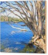 Do-00105 Avoca Wood Print
