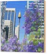 Do-00106 Spring In Sydney Wood Print