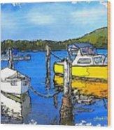 Do-00147 Resting Boats Wood Print