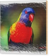 Do-00153 Colourful Lorikeet Wood Print