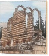 Do-00302 Ruins In Anjar Wood Print
