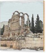 Do-00306 Old Ruins In Anjar Wood Print