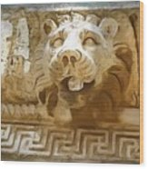 Do-00313 Lion Water Feature Wood Print