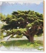 Do-00319 Cedar Tree Wood Print