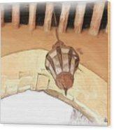 Do-00326 Old Lantern In Beiteddine Wood Print