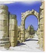 Do-00407 Roman Portico In Tyr Wood Print